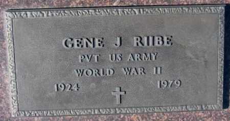 RIIBE, GENE J. (WW II) - Cedar County, Nebraska | GENE J. (WW II) RIIBE - Nebraska Gravestone Photos