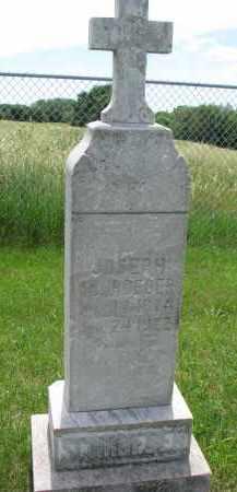 SCHROEDER, JOSEPH - Cedar County, Nebraska | JOSEPH SCHROEDER - Nebraska Gravestone Photos