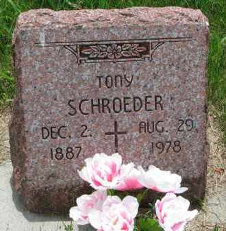 SCHROEDER, TONY - Cedar County, Nebraska | TONY SCHROEDER - Nebraska Gravestone Photos