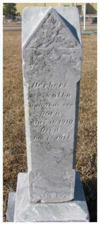 SOLKO, HERBERT - Cedar County, Nebraska   HERBERT SOLKO - Nebraska Gravestone Photos