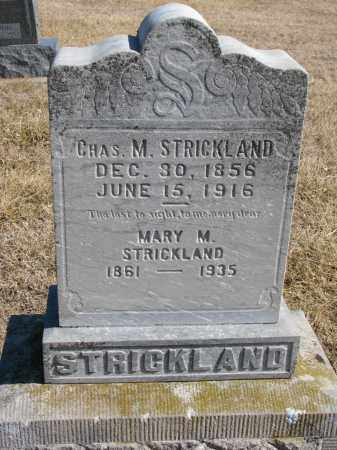 STRICKLAND, MARY M. - Cedar County, Nebraska | MARY M. STRICKLAND - Nebraska Gravestone Photos