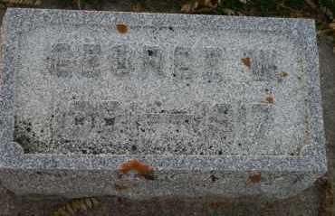 STUKAS, GEORGE W - Cedar County, Nebraska | GEORGE W STUKAS - Nebraska Gravestone Photos