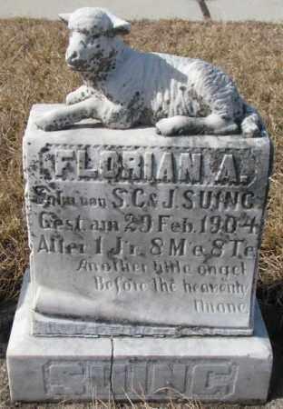 SUING, FLORIAN A. - Cedar County, Nebraska | FLORIAN A. SUING - Nebraska Gravestone Photos