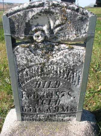 SULLIVAN, DANIEL - Cedar County, Nebraska | DANIEL SULLIVAN - Nebraska Gravestone Photos