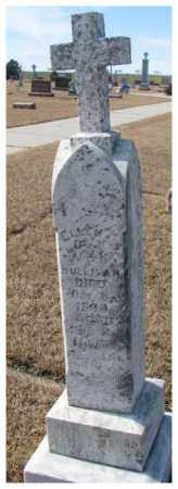 SULLIVAN, ELLEN J. - Cedar County, Nebraska | ELLEN J. SULLIVAN - Nebraska Gravestone Photos