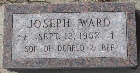 WARD, JOSEPH - Cedar County, Nebraska | JOSEPH WARD - Nebraska Gravestone Photos
