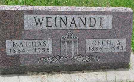 WEINANDT, CECILIA - Cedar County, Nebraska | CECILIA WEINANDT - Nebraska Gravestone Photos