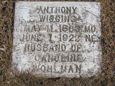WIGGINS, ANTHONY - Cedar County, Nebraska | ANTHONY WIGGINS - Nebraska Gravestone Photos