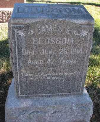 BLOSSOM, JAMES E. - Cuming County, Nebraska | JAMES E. BLOSSOM - Nebraska Gravestone Photos