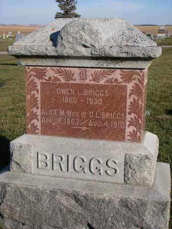 BRIGGS, ALICE M. - Cuming County, Nebraska   ALICE M. BRIGGS - Nebraska Gravestone Photos