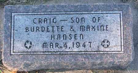 HANSEN, CRAIG - Cuming County, Nebraska   CRAIG HANSEN - Nebraska Gravestone Photos