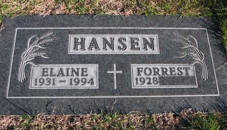 HANSEN, FORREST - Cuming County, Nebraska | FORREST HANSEN - Nebraska Gravestone Photos