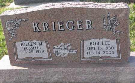 KRIEGER, JOLEEN M. - Cuming County, Nebraska | JOLEEN M. KRIEGER - Nebraska Gravestone Photos