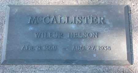 MCCALLISTER, WILBUR NELSON - Cuming County, Nebraska | WILBUR NELSON MCCALLISTER - Nebraska Gravestone Photos