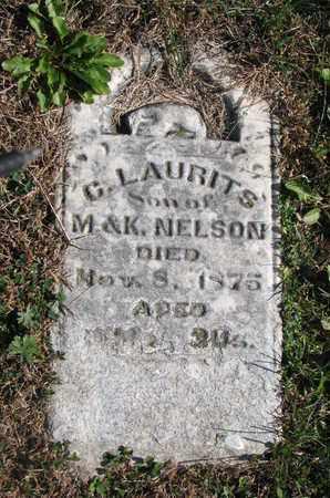 NELSON, G. LAURITS - Cuming County, Nebraska   G. LAURITS NELSON - Nebraska Gravestone Photos