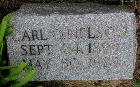 NELSON, CARL O. - Cuming County, Nebraska | CARL O. NELSON - Nebraska Gravestone Photos