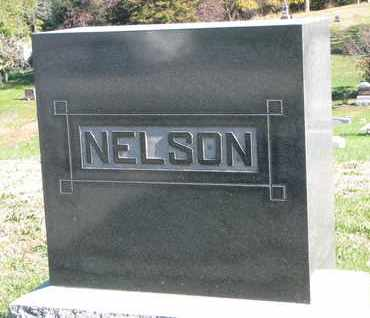 NELSON, (FAMILY MONUMENT) - Cuming County, Nebraska | (FAMILY MONUMENT) NELSON - Nebraska Gravestone Photos