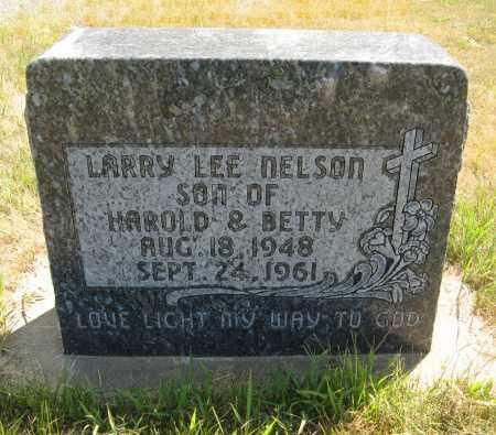 NELSON, LARRY LEE - Cuming County, Nebraska | LARRY LEE NELSON - Nebraska Gravestone Photos