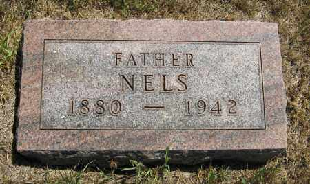 NELSON, NELS - Cuming County, Nebraska | NELS NELSON - Nebraska Gravestone Photos