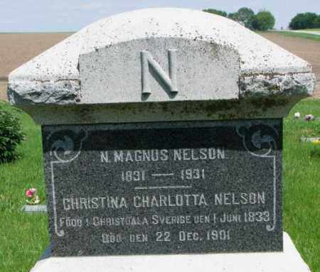 NELSON, N. MAGNUS - Cuming County, Nebraska | N. MAGNUS NELSON - Nebraska Gravestone Photos