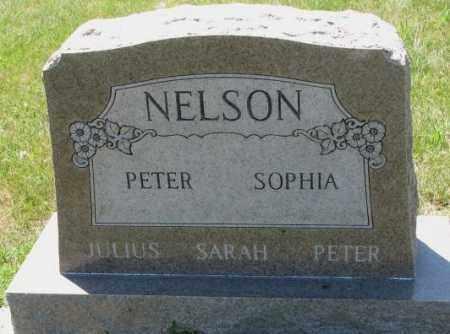 NELSON, PETER - Cuming County, Nebraska | PETER NELSON - Nebraska Gravestone Photos