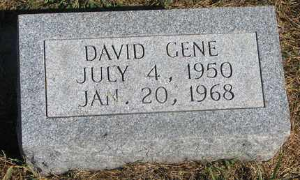 PETERS, DAVID GENE - Cuming County, Nebraska | DAVID GENE PETERS - Nebraska Gravestone Photos