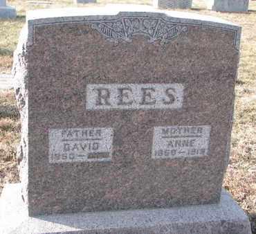 REES, DAVID - Cuming County, Nebraska   DAVID REES - Nebraska Gravestone Photos