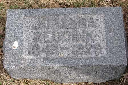 REUDINK, JOHANNA - Cuming County, Nebraska   JOHANNA REUDINK - Nebraska Gravestone Photos