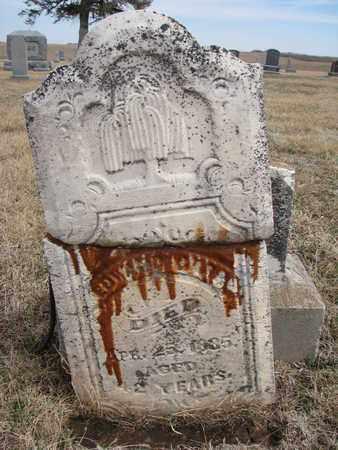 ROGERS, EDWARD - Cuming County, Nebraska   EDWARD ROGERS - Nebraska Gravestone Photos