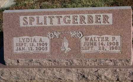 SPLITTGERBER, LYDIA A. - Cuming County, Nebraska   LYDIA A. SPLITTGERBER - Nebraska Gravestone Photos