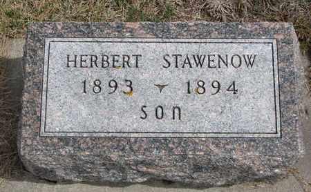 STAWENOW, HERBERT - Cuming County, Nebraska   HERBERT STAWENOW - Nebraska Gravestone Photos