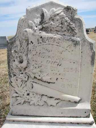 VONSEGGERN, LEWIS A. - Cuming County, Nebraska | LEWIS A. VONSEGGERN - Nebraska Gravestone Photos