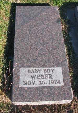 WEBER, BABY BOY - Cuming County, Nebraska | BABY BOY WEBER - Nebraska Gravestone Photos