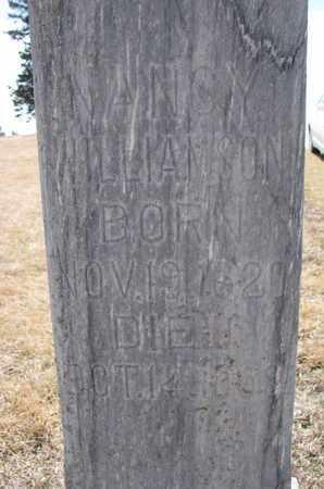 WILLIAMSON, NANCY (CLOSEUP) - Cuming County, Nebraska | NANCY (CLOSEUP) WILLIAMSON - Nebraska Gravestone Photos