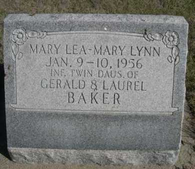BAKER, MARY LYNN - Dawes County, Nebraska | MARY LYNN BAKER - Nebraska Gravestone Photos