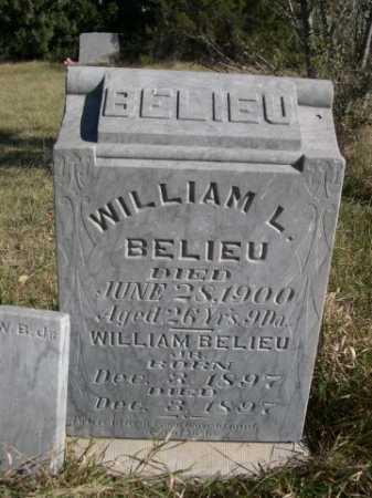 BELIEU, WILLIAM JR. - Dawes County, Nebraska | WILLIAM JR. BELIEU - Nebraska Gravestone Photos