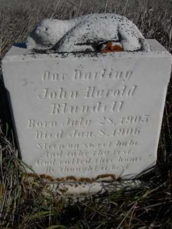 BLUNDELL, JOHN HAROLD - Dawes County, Nebraska | JOHN HAROLD BLUNDELL - Nebraska Gravestone Photos
