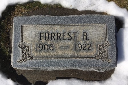 BURK, FORREST A - Dawes County, Nebraska | FORREST A BURK - Nebraska Gravestone Photos