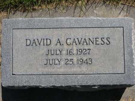 CAVANESS, DAVID A. - Dawes County, Nebraska   DAVID A. CAVANESS - Nebraska Gravestone Photos