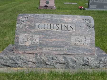 COUSINS, HARRY - Dawes County, Nebraska | HARRY COUSINS - Nebraska Gravestone Photos