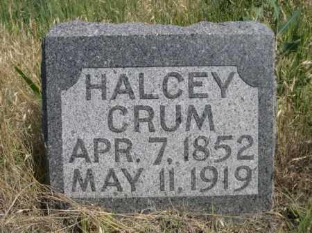 CRUM, HALCEY - Dawes County, Nebraska | HALCEY CRUM - Nebraska Gravestone Photos