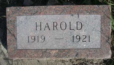 ELLIS, HAROLD - Dawes County, Nebraska   HAROLD ELLIS - Nebraska Gravestone Photos