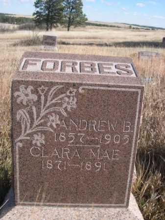 FORBES, ANDREW B. - Dawes County, Nebraska | ANDREW B. FORBES - Nebraska Gravestone Photos