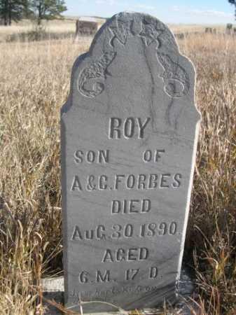 FORBES, ROY - Dawes County, Nebraska | ROY FORBES - Nebraska Gravestone Photos