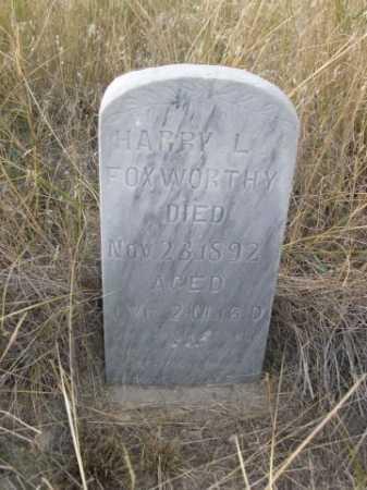 FOXWORTHY, HARRY LYNN - Dawes County, Nebraska | HARRY LYNN FOXWORTHY - Nebraska Gravestone Photos