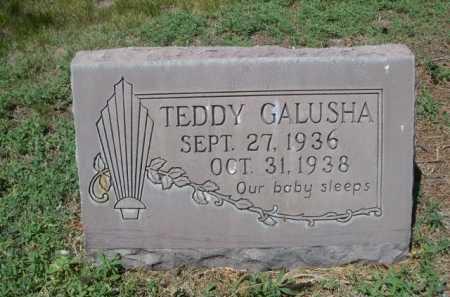 GALUSHA, TEDDY - Dawes County, Nebraska | TEDDY GALUSHA - Nebraska Gravestone Photos