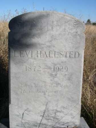 HALLSTED, LEVI - Dawes County, Nebraska | LEVI HALLSTED - Nebraska Gravestone Photos