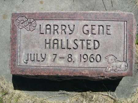 HALLSTED, LARRY GENE - Dawes County, Nebraska | LARRY GENE HALLSTED - Nebraska Gravestone Photos