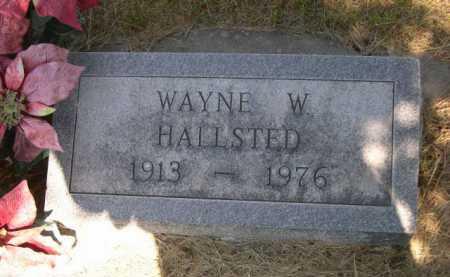 HALLSTED, WAYNE W. - Dawes County, Nebraska   WAYNE W. HALLSTED - Nebraska Gravestone Photos