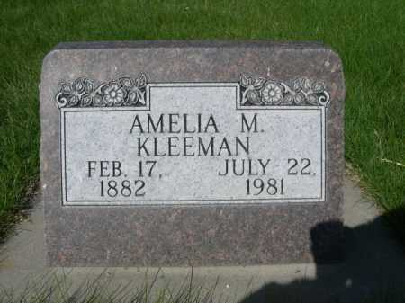 KLEEMAN, AMELIA M. - Dawes County, Nebraska | AMELIA M. KLEEMAN - Nebraska Gravestone Photos